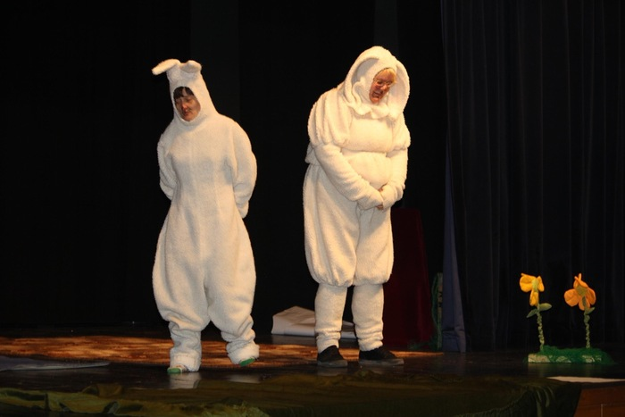 Viljandimaa koolide teatripäev